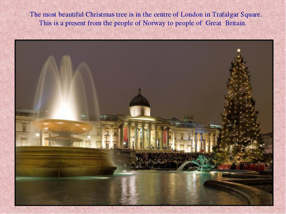 The most beautiful Christmas tree is in the centre of London in Trafalgar Sq...