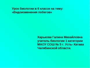 Урок биологии в 6 классе на тему: «Видоизменения побегов» Харькова Галина Мих