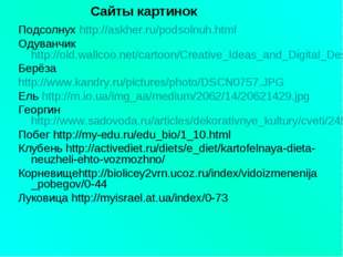 Подсолнух http://askher.ru/podsolnuh.html Одуванчикhttp://old.wallcoo.net/car