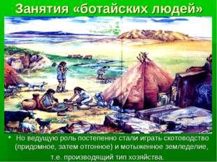 Занятия «ботайских людей» Но ведущую роль постепенно стали играть скотоводств
