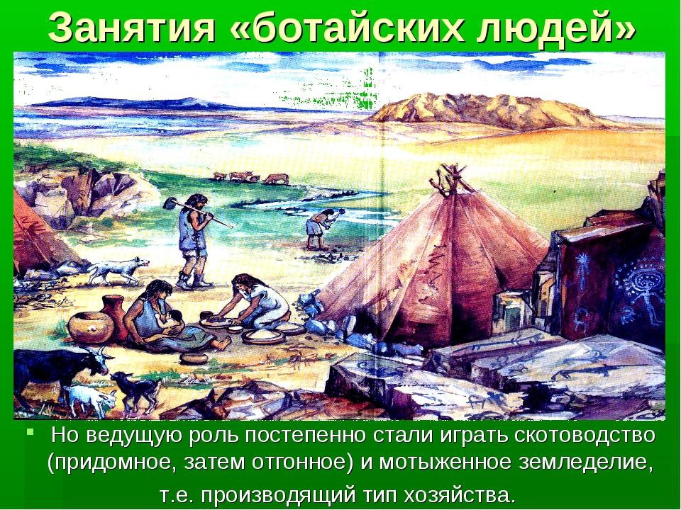 Занятия «ботайских людей» Но ведущую роль постепенно стали играть скотоводств...