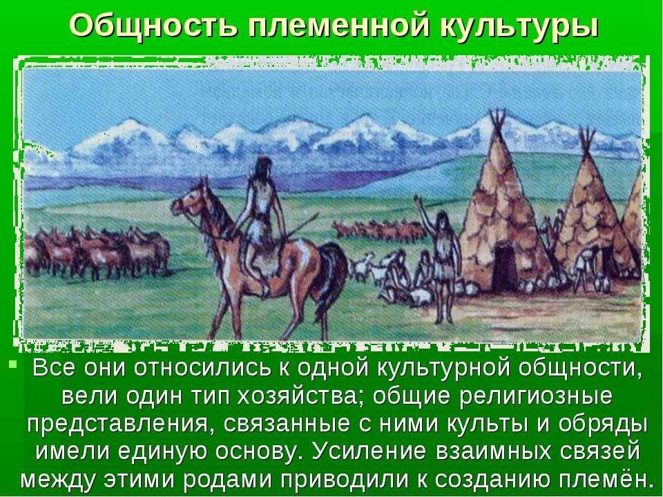 Общность племенной культуры Все они относились к одной культурной общности, в...