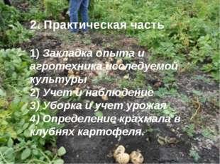 2. Практическая часть 1) Закладка опыта и агротехника исследуемой культуры 2
