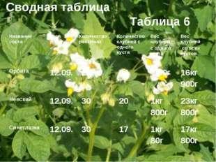 Сводная таблица Таблица 6 Название сортаДата уборкиКоличество растений Кол