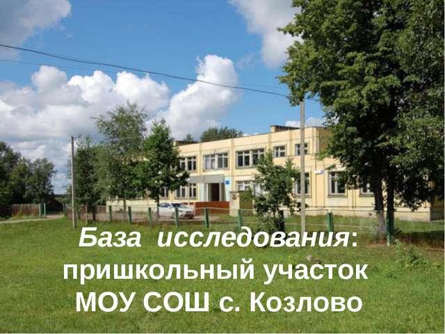 База исследования: пришкольный участок МОУ СОШ с. Козлово