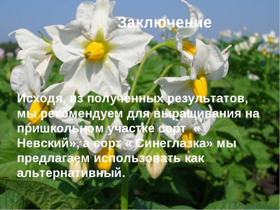 Заключение Исходя, из полученных результатов, мы рекомендуем для выращивания...