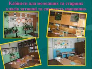 Кабінети для молодших та старших класів затишні та сприяють навчанню