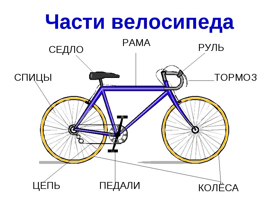 СЕДЛО РУЛЬ КОЛЁСА ПЕДАЛИ ЦЕПЬ ТОРМОЗ СПИЦЫ РАМА Части велосипеда