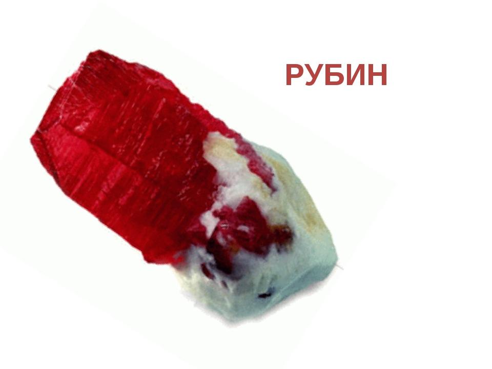PУБИН