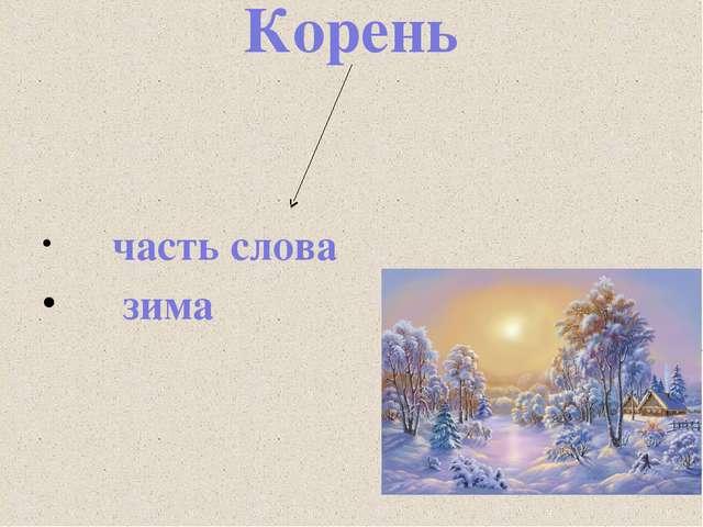 Корень часть слова зима