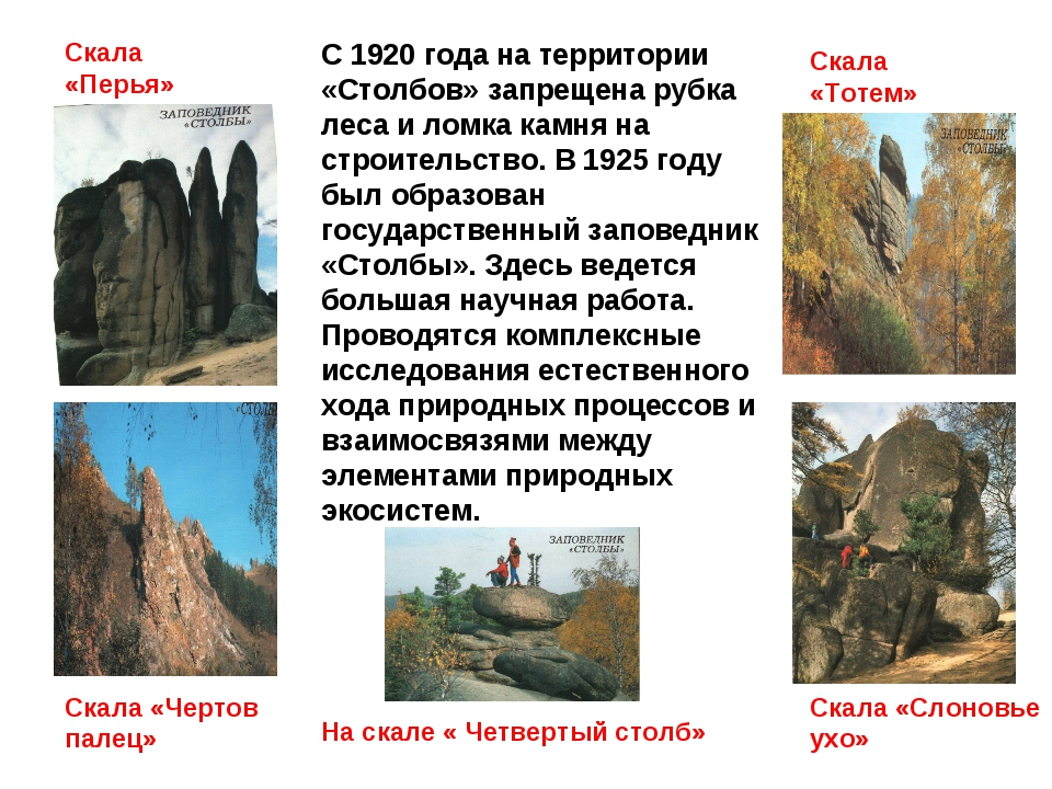 С 1920 года на территории «Столбов» запрещена рубка леса и ломка камня на стр...