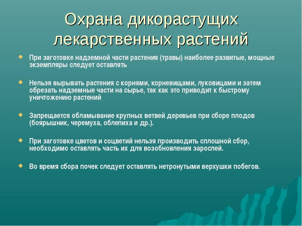Охрана дикорастущих лекарственных растений При заготовке надземной части раст...
