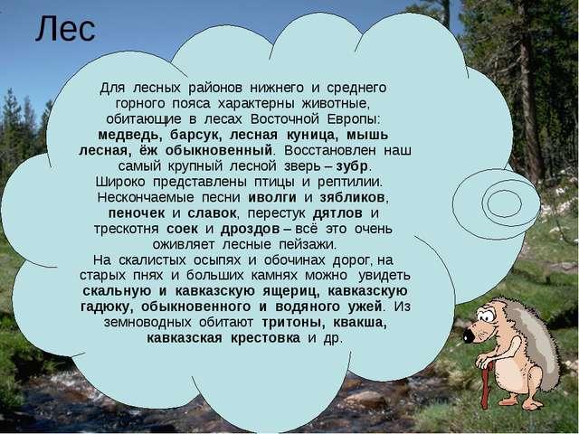 Лес Для лесных районов нижнего и среднего горного пояса характерны животные,...