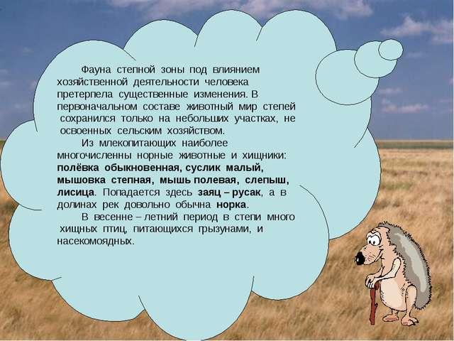 Фауна степной зоны под влиянием хозяйственной деятельности человека претерпел...