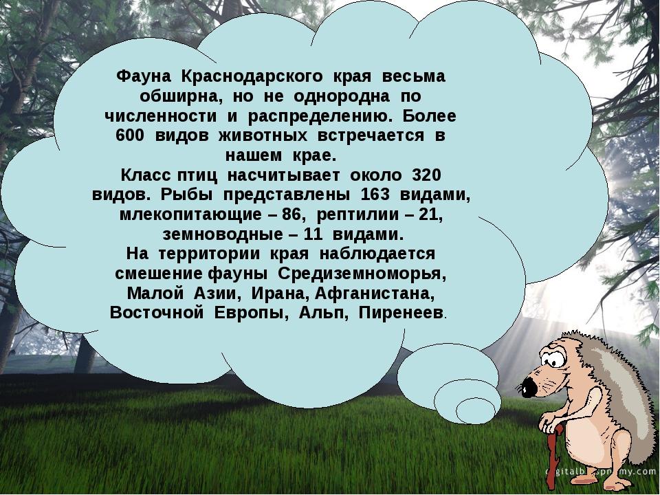 Фауна Краснодарского края весьма обширна, но не однородна по численности и ра...