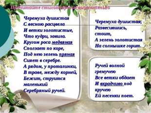 Черемуха душистая С весною расцвела И ветки золотистые, Что кудри, завила. Кр