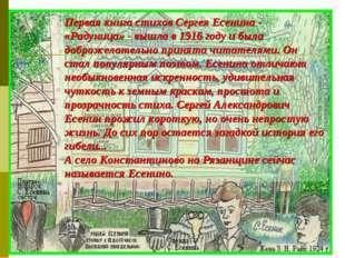 Первая книга стихов Сергея Есенина - «Радуница» - вышла в 1916 году и была до