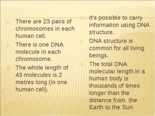 There are 23 pairs of chromosomes in each human cell. There is one DNA molecu