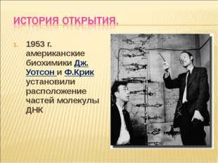 1953 г. американские биохимики Дж. Уотсон и Ф.Крик установили расположение ча