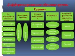Дифференцированное обучение группы По психическим качествам По типу телосложе
