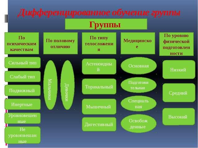 Дифференцированное обучение группы По психическим качествам По типу телосложе...