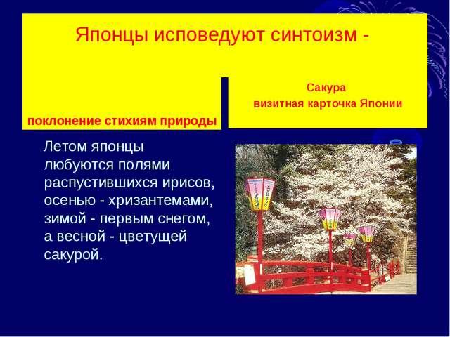 Японцы исповедуют синтоизм - поклонение стихиям природы Летом японцы любуются...