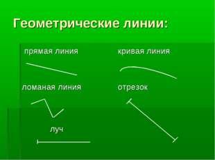 Геометрические линии: прямая линия ломаная линия кривая линия отрезок луч