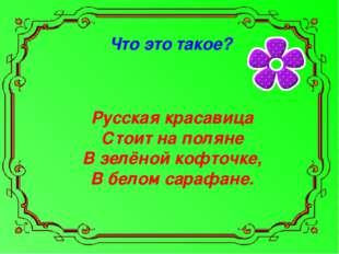 Что это такое? Русская красавица Стоит на поляне В зелёной кофточке, В белом
