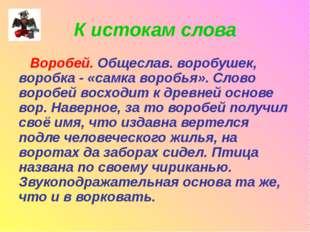 К истокам слова Воробей. Общеслав. воробушек, воробка - «самка воробья». Слов
