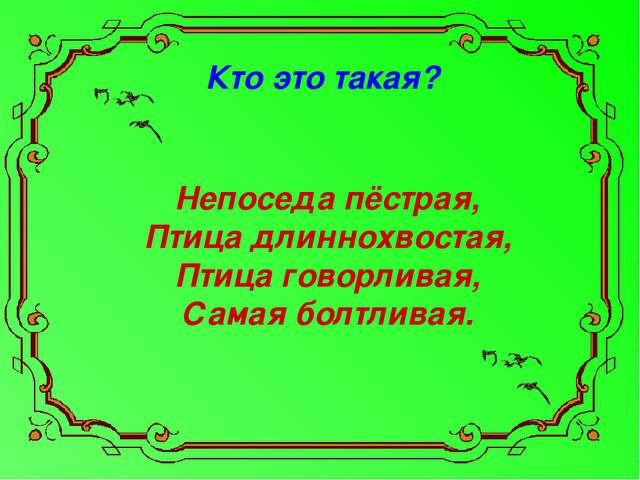 Кто это такая? Непоседа пёстрая, Птица длиннохвостая, Птица говорливая, Самая...