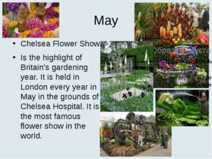 May Chelsea Flower Show Is the highlight of Britain's gardening year. It is h