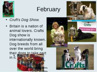 February Cruft's Dog Show. Britain is a nation of animal lovers. Crafts Dog s