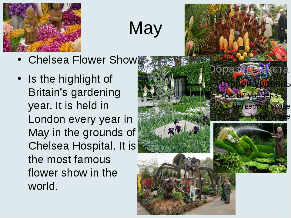 May Chelsea Flower Show Is the highlight of Britain's gardening year. It is h...