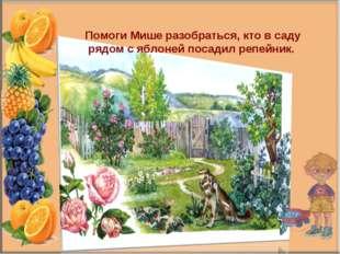 Помоги Мише разобраться, кто в саду рядом с яблоней посадил репейник.