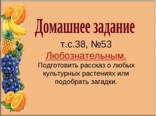 т.с.38, №53 Любознательным. Подготовить рассказ о любых культурных растениях