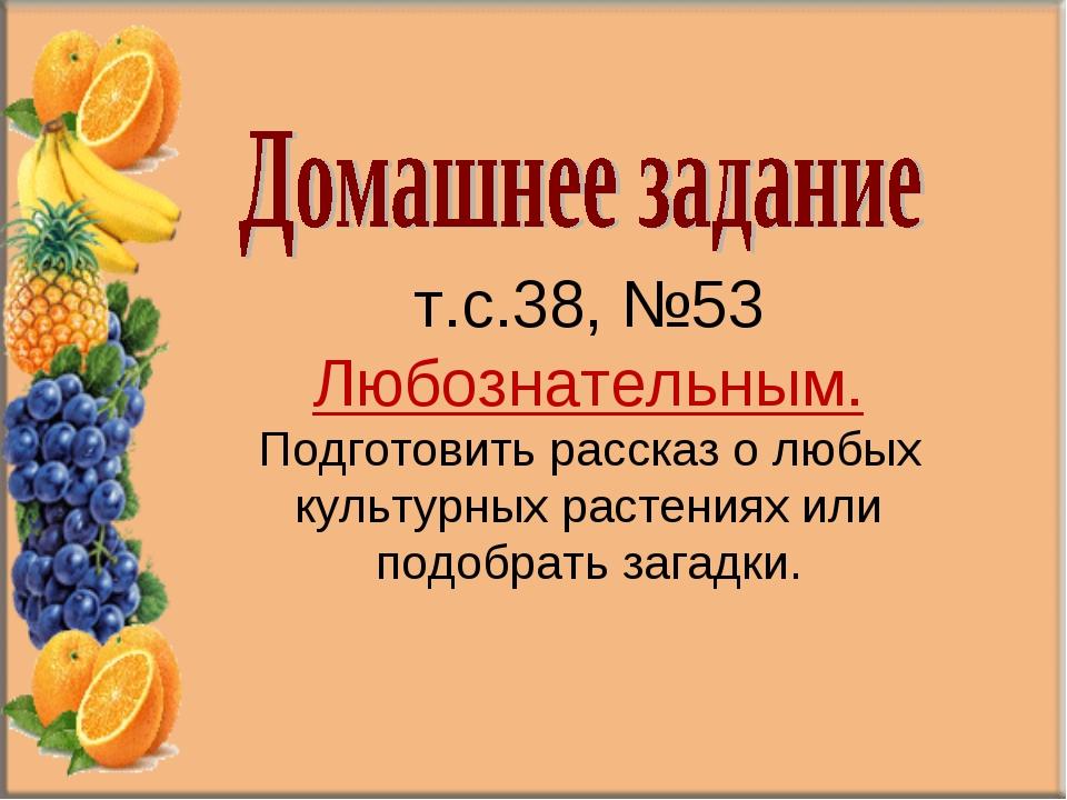 т.с.38, №53 Любознательным. Подготовить рассказ о любых культурных растениях...