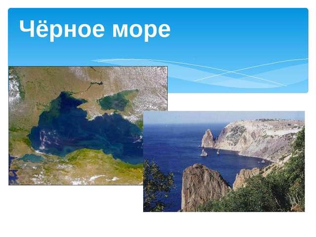 Ставропольский край, с.Тищенское, 2013г. Чёрное море