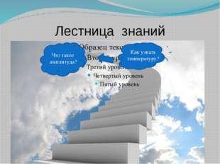 Лестница знаний Что такое амплитуда? Как узнать температуру?