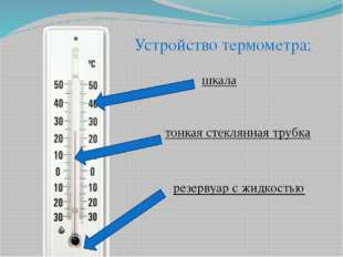 шкала тонкая стеклянная трубка резервуар с жидкостью Устройство термометра: