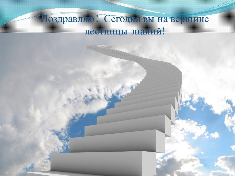 Поздравляю! Сегодня вы на вершине лестницы знаний!