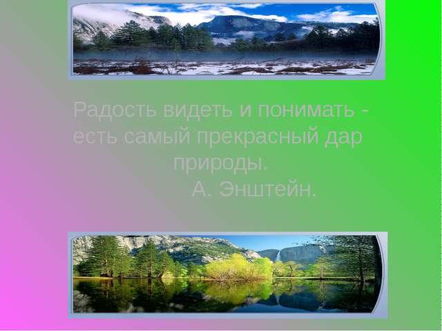 Радость видеть и понимать - есть самый прекрасный дар природы. А. Энштейн.