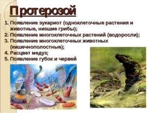 Протерозой Появление эукариот (одноклеточные растения и животные, низшие гриб
