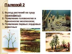 Палеозой 2 Выход растений на сушу (псилофиты); Появление головоногих и брюхон