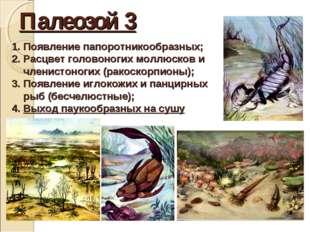 Палеозой 3 Появление папоротникообразных; Расцвет головоногих моллюсков и чле