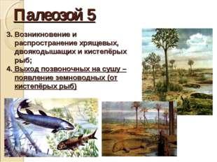Палеозой 5 3. Возникновение и распространение хрящевых, двоякодышащих и кисте