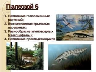 Палеозой 6 Появление голосеменных растений; Возникновение крылатых насекомых;