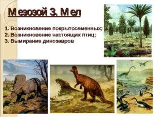 Мезозой 3. Мел Возникновение покрытосеменных; Возникновение настоящих птиц; В