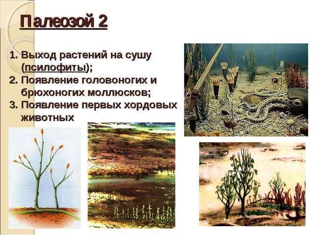Палеозой 2 Выход растений на сушу (псилофиты); Появление головоногих и брюхон...