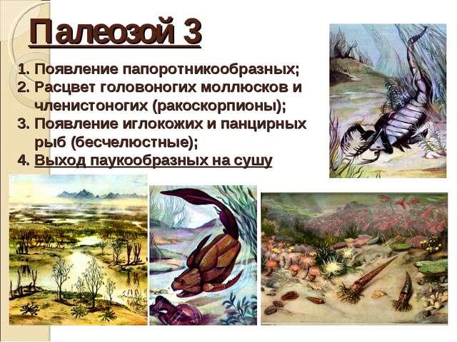 Палеозой 3 Появление папоротникообразных; Расцвет головоногих моллюсков и чле...