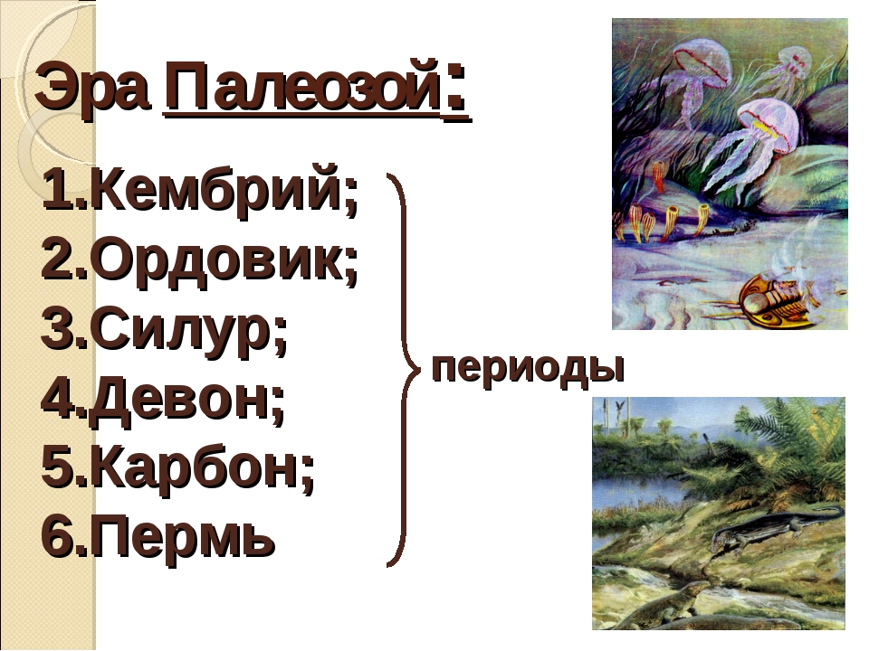 Эра Палеозой: Кембрий; Ордовик; Силур; Девон; Карбон; Пермь периоды
